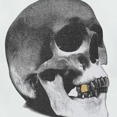 skulltooth